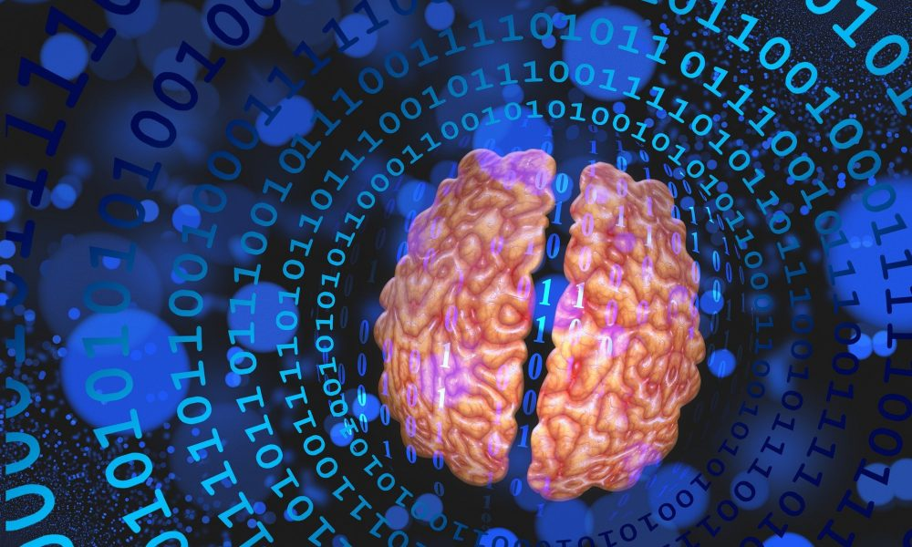 Brain 5822311 1920